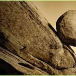 Tropezando con la misma piedra